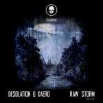 TRM-EP-015 Desolation & Xaero - Raw Storm